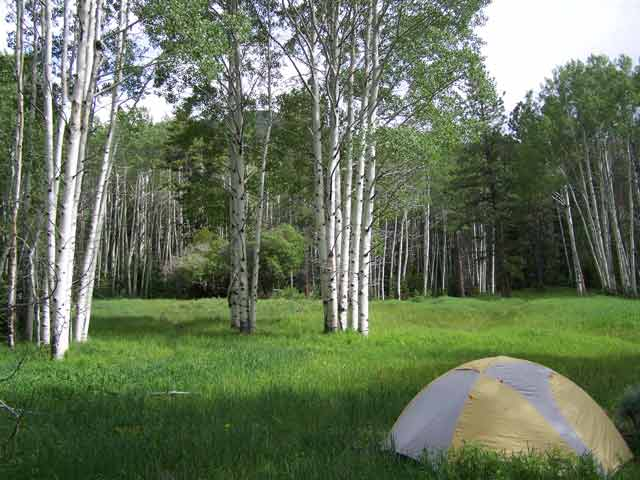 Camping-Great-Basin-NP-(web)